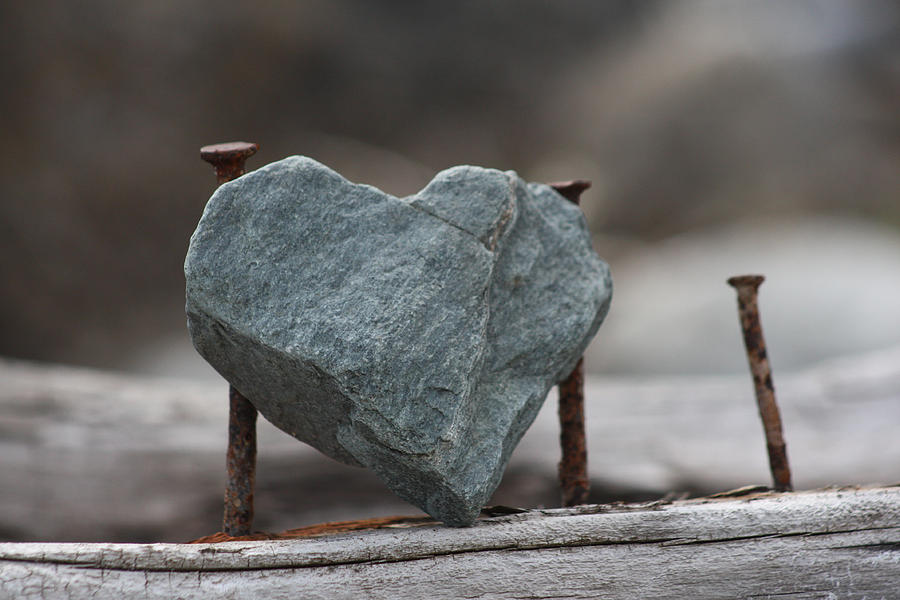 Heart of Stone Photograph by Cathie Douglas