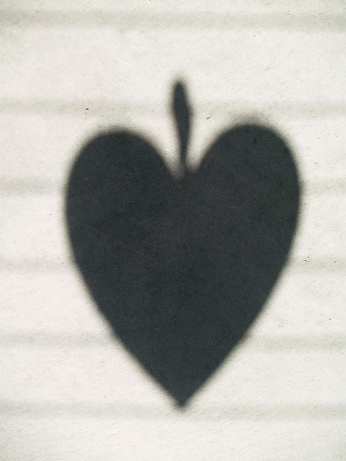 Heart Photograph - Heart On Wire I by Laine Zunte