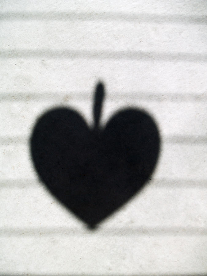Heart Photograph - Heart On Wire II by Laine Zunte