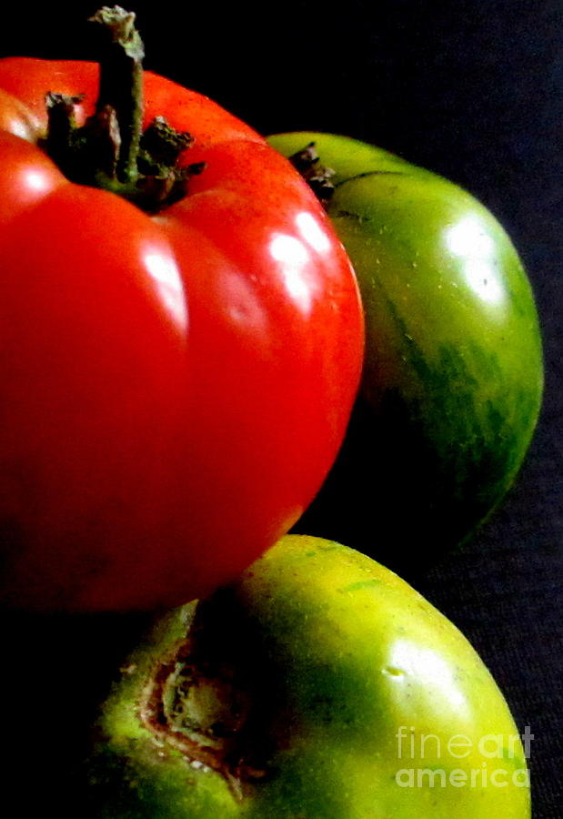 Tomatoes Photograph - Heirloom Tomatoes by Maria Scarfone
