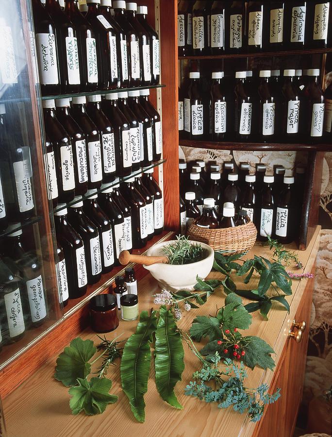 Medicine Photograph - Herbal Pharmacy by Tek Image