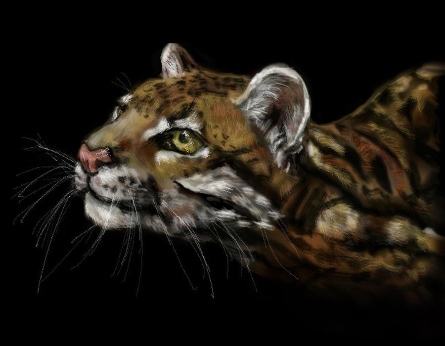 Cat Mixed Media - Here Kitty Kitty by Lakota Phillips