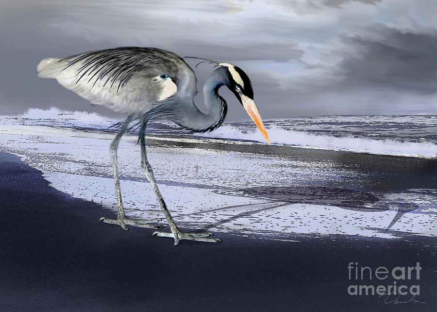 Heron Photograph - Heron Taking His Afternoon Beach Walk by Danuta Bennett