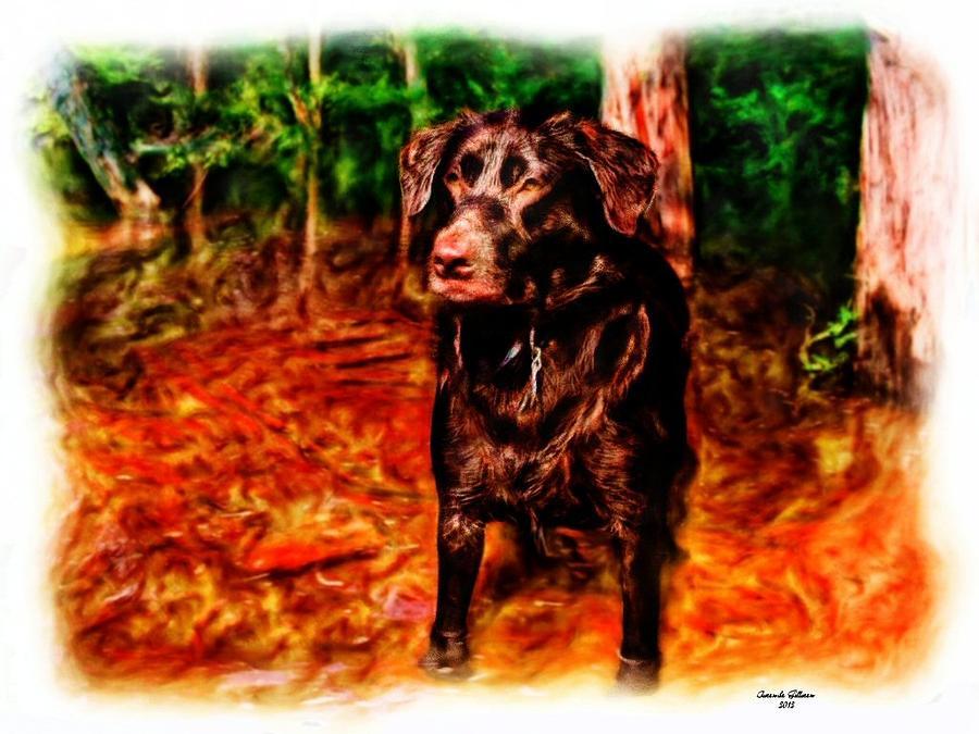 Chocolate Lab Painting - Hershey Variation by Mander Jack