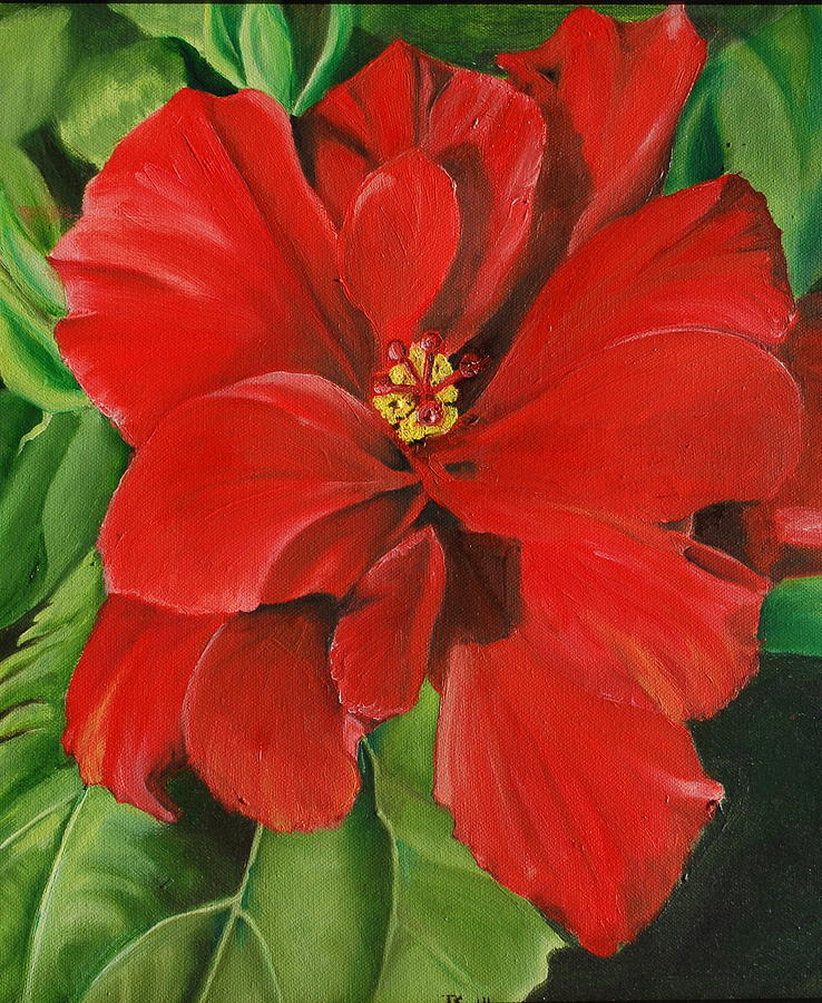 Red Painting - Hibiscus by Teresa Smith