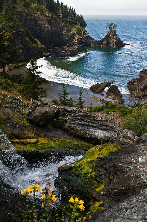 Oregon Photograph - Hidden Cove by Jake Johnson