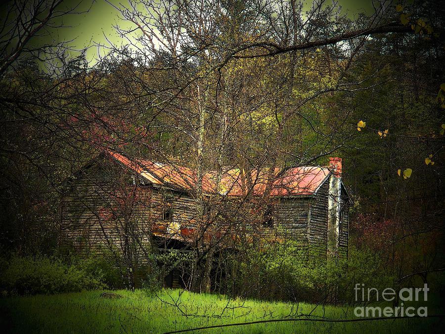 Spring Photograph - Hidden House In Spring by Joyce Kimble Smith