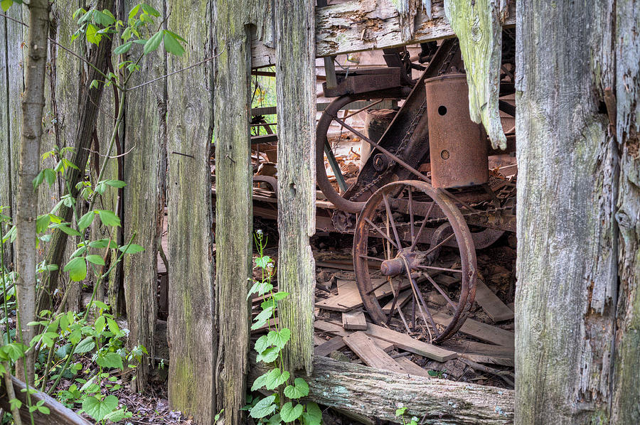Hidden Treasures Photograph - Hidden Treasure by JC Findley