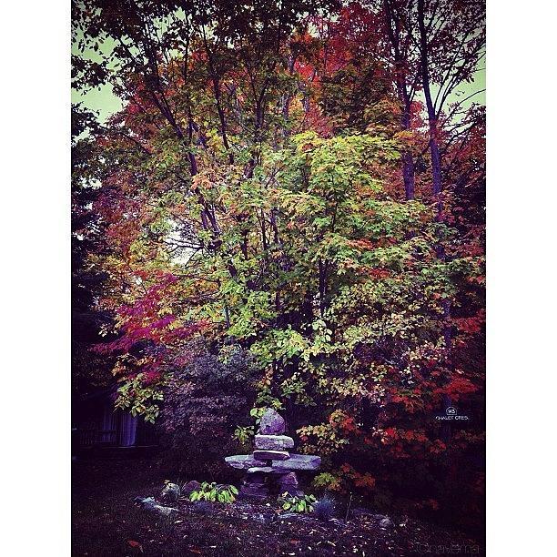 Fall Photograph - Hidden Valley Inukshuk by Natasha Marco
