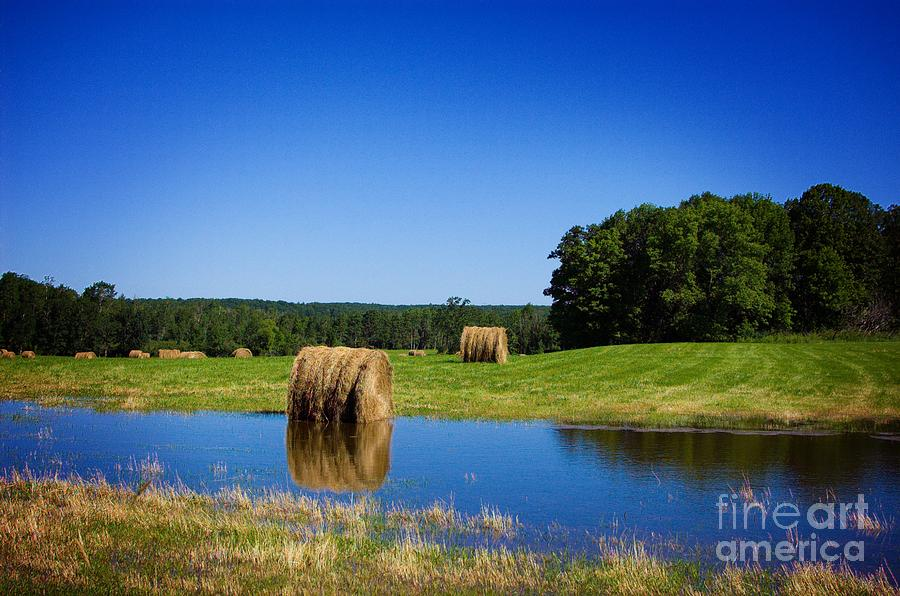 Pond Photograph - High And Dry On The North Forty by The Stone Age