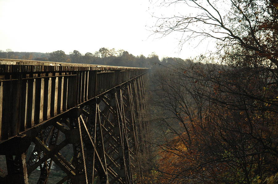 Trestle Photograph - High And Mighty by Cheryl Helms