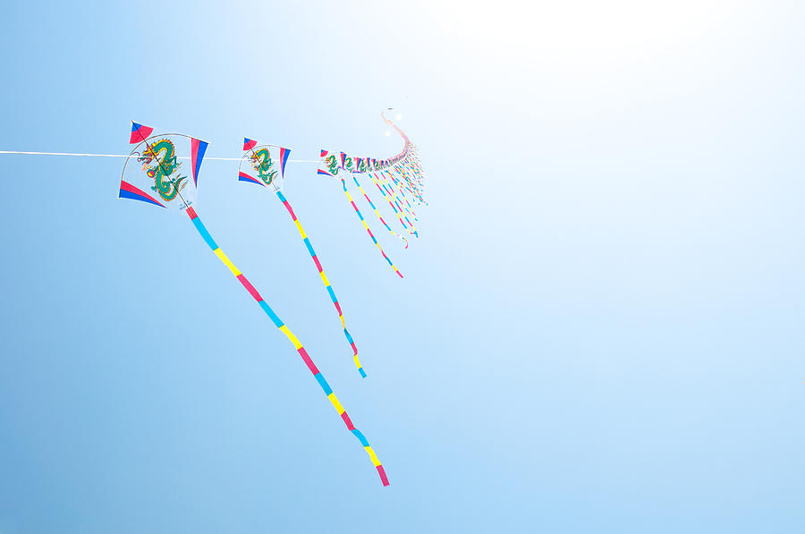 Horizontal Photograph - High Flying Kites by Flash Parker