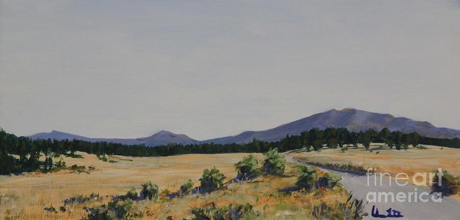 Arizona Painting - High Land Road by Adam Smith