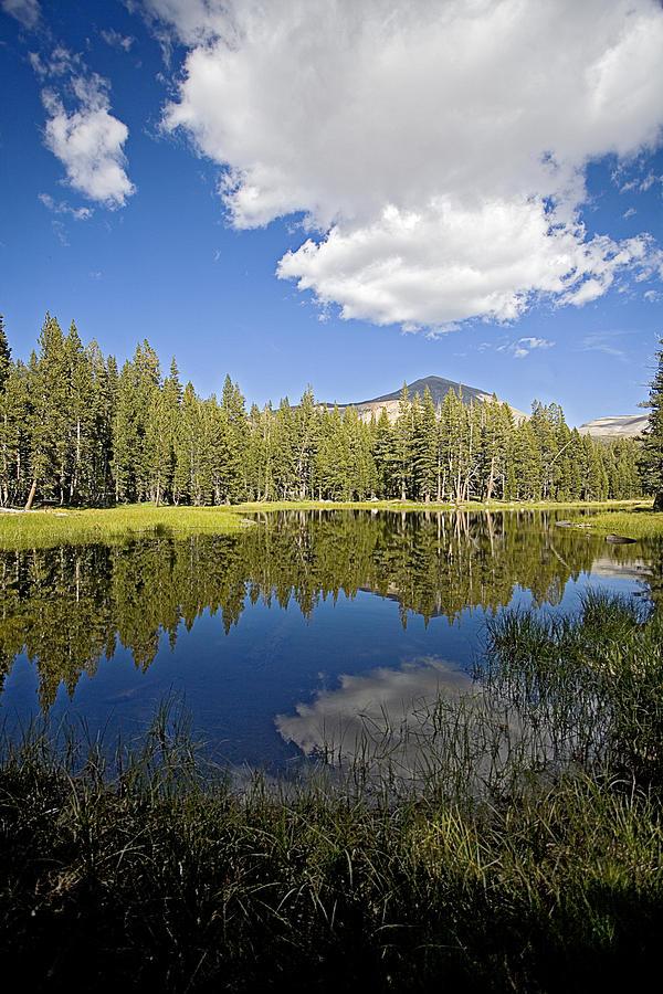 High Sierras Photograph - High Sierras Lake by Bonnie Bruno