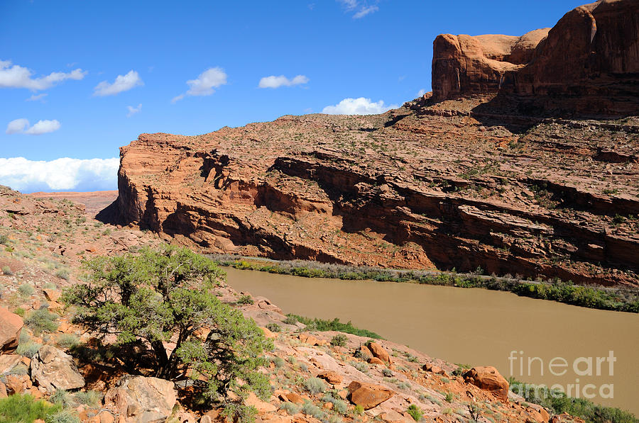 Moab Photograph - Hiking The Moab Rim by Gary Whitton