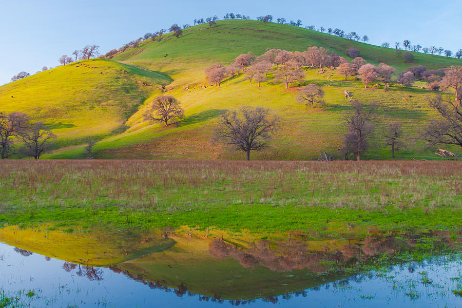 Landscape Photograph - Hill Reflection In Pond by Marc Crumpler