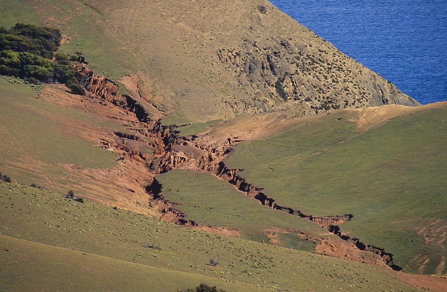Hummocky Photograph - Hillside Erosion Caused By Run by Jason Edwards