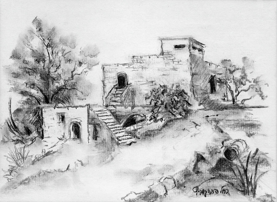 Hirbe Landscape In Afek Black And White Old Building Ruins Trees