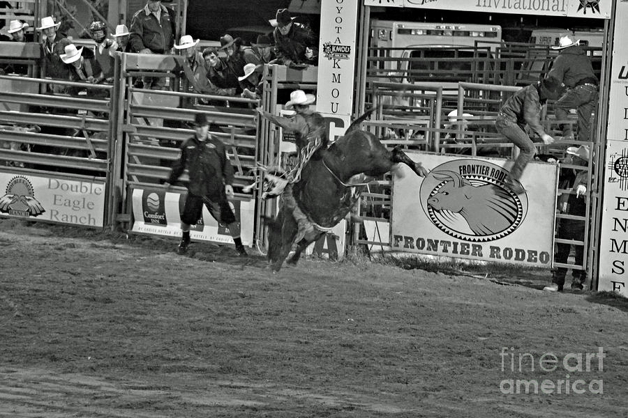 Bull Riding Photograph - Hold On For 8 by Shawn Naranjo