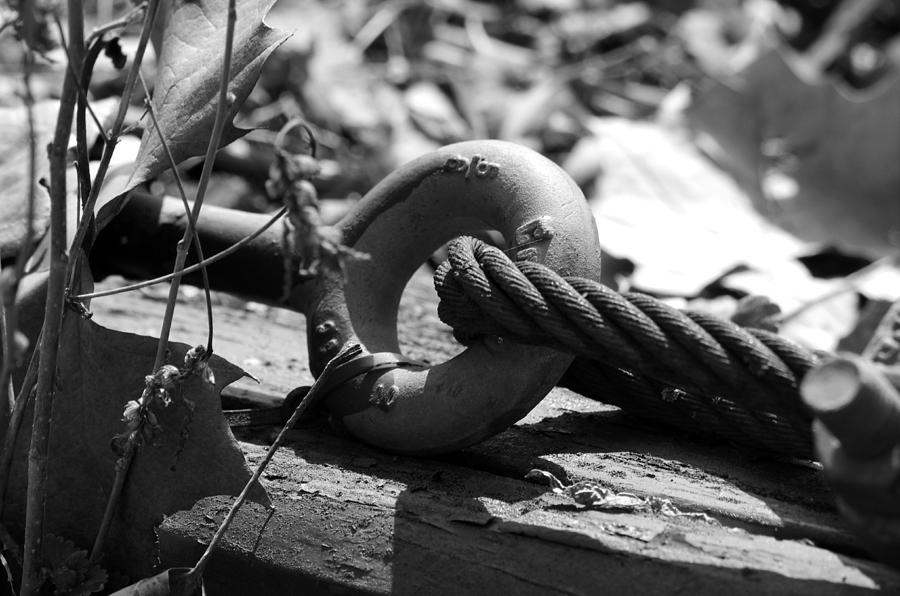 Black And White Photograph - Holding On by Loretta Justice
