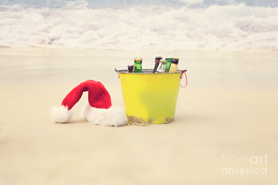 Christmas Photograph - Holiday Cheer by Kim Fearheiley