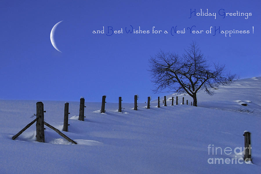 Winter Photograph - Holiday Greetings by Sabine Jacobs