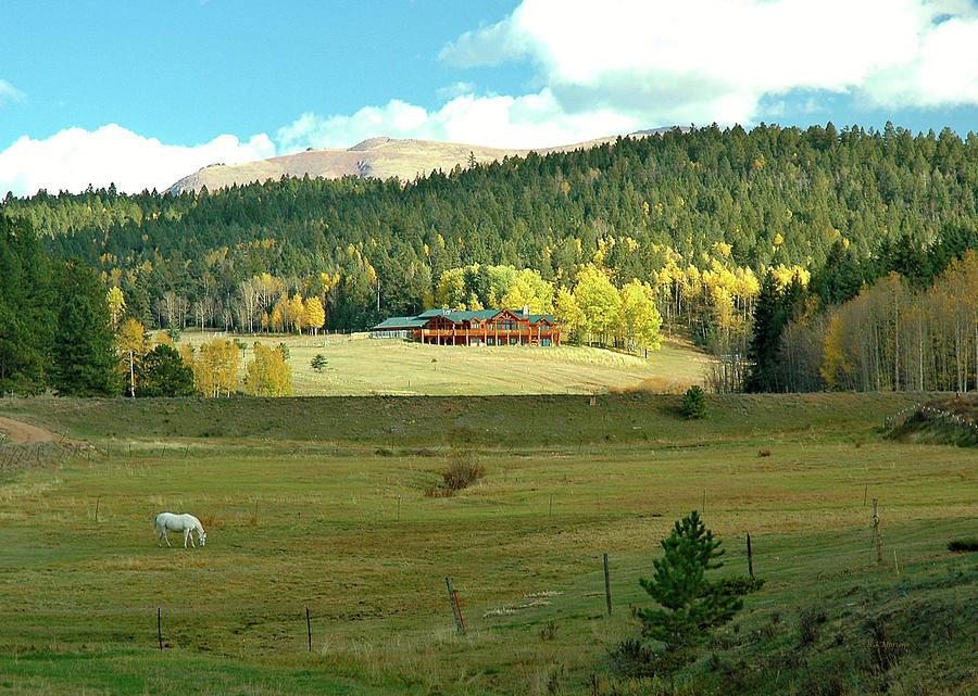Pasture Photograph - Home On The Range by RJ Martens