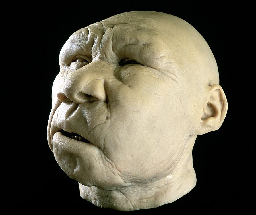 Homo Heidelbergensis Photograph - Homo Heidelbergensis Reconstruction by Javier Truebamsf