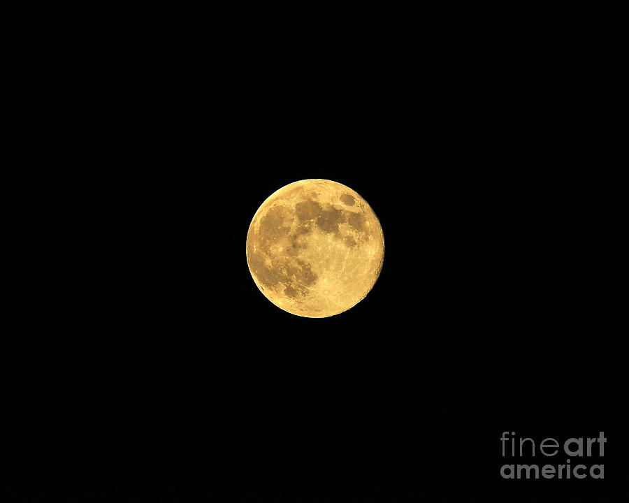 Moon Photograph - Honey Moon by Al Powell Photography USA