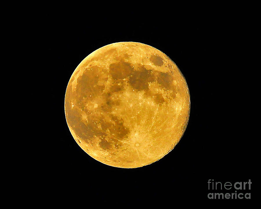 Moon Photograph - Honey Moon Close Up by Al Powell Photography USA