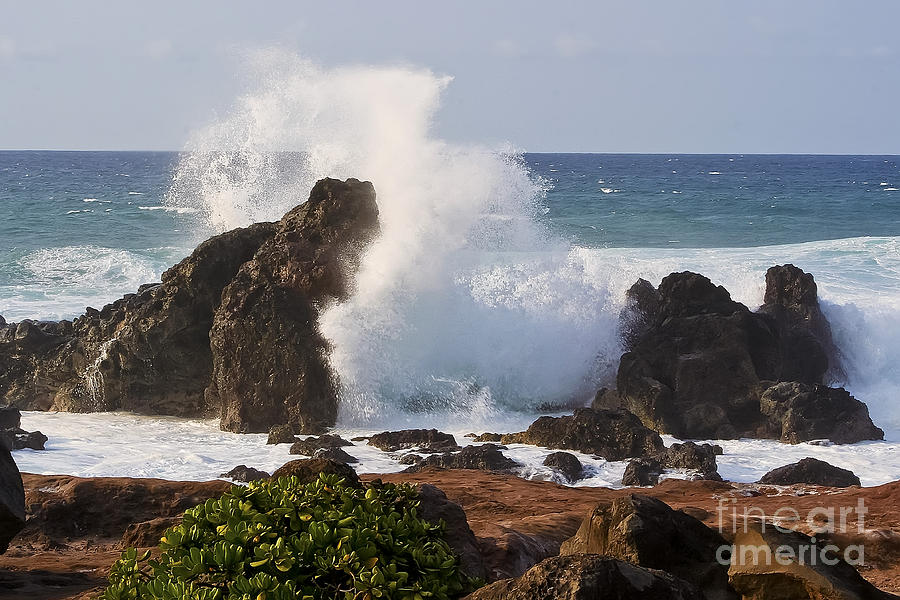 Wave Photograph - Hookipa Beach Wave 1 by Teresa Zieba