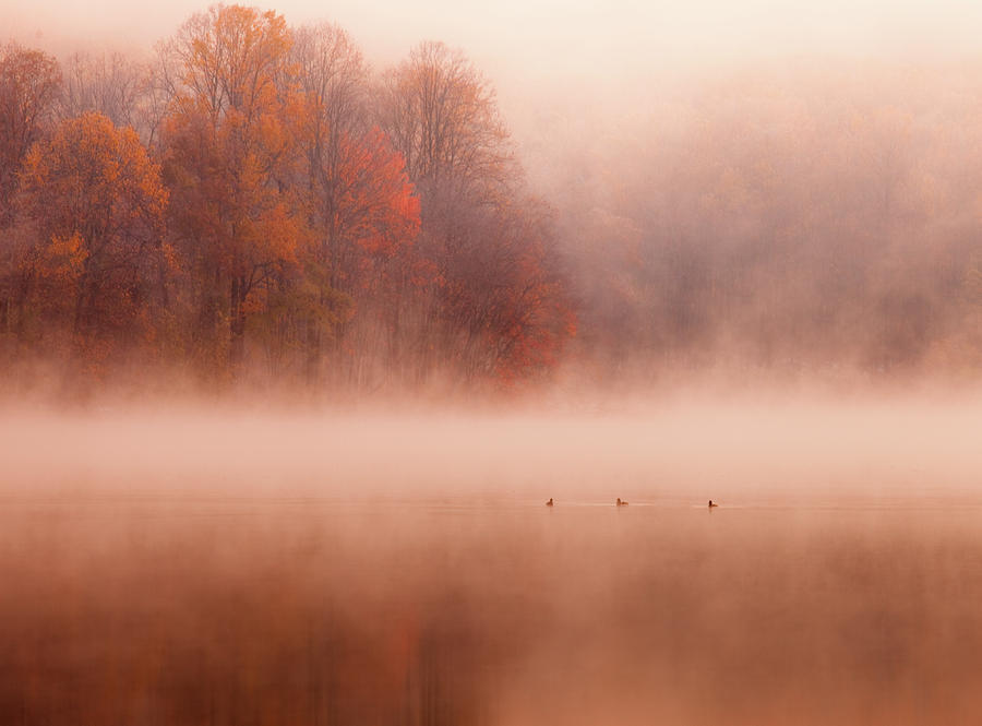Horizontal Photograph - Hopewell Lake, French Creek State Park by Michael Lawrence Photography