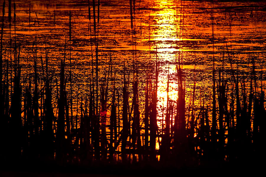Horicon Photograph - Horicon Marsh Sunset Wisconsin by Steve Gadomski