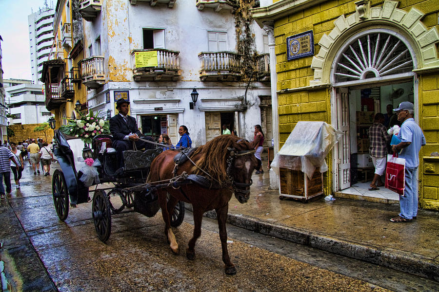 Cartagena Photograph - Horse And Buggy In Old Cartagena Colombia by David Smith