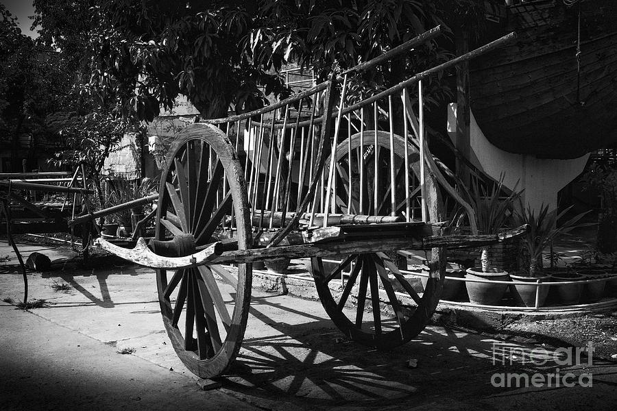 Thanh Tran Photograph - Horse Cart by Thanh Tran