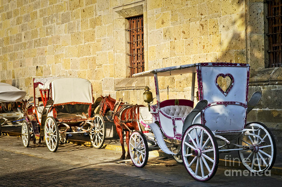Carriages Photograph - Horse Drawn Carriages In Guadalajara by Elena Elisseeva