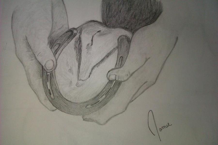 Horse Shoe Drawing by Jamie Mah
