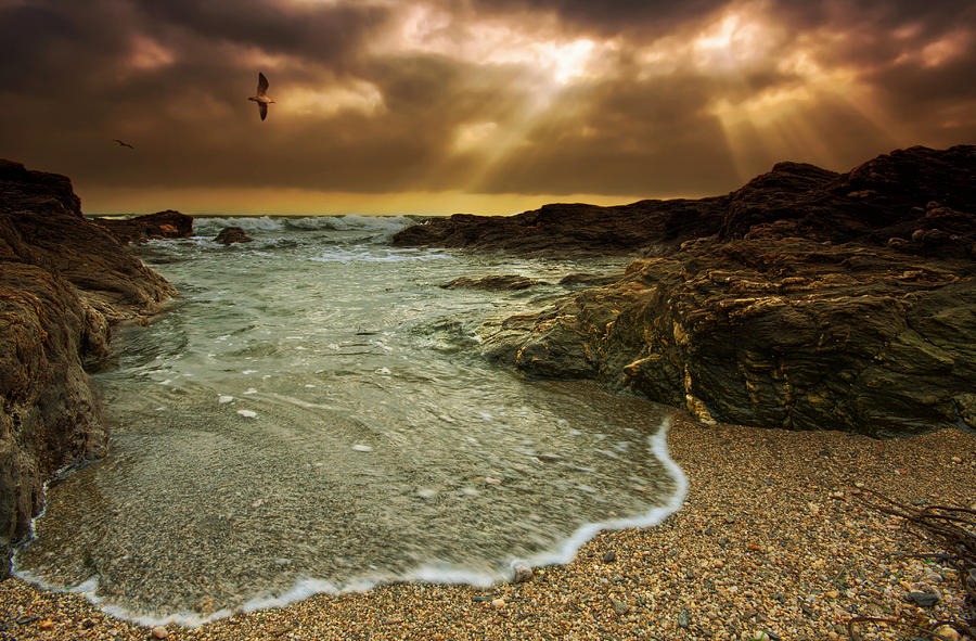 Canvas Photograph - Horseley Cove by Mark Leader