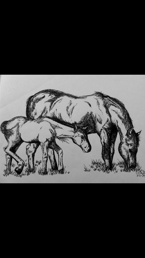 Horses Drawing - Horses by Erin Harris