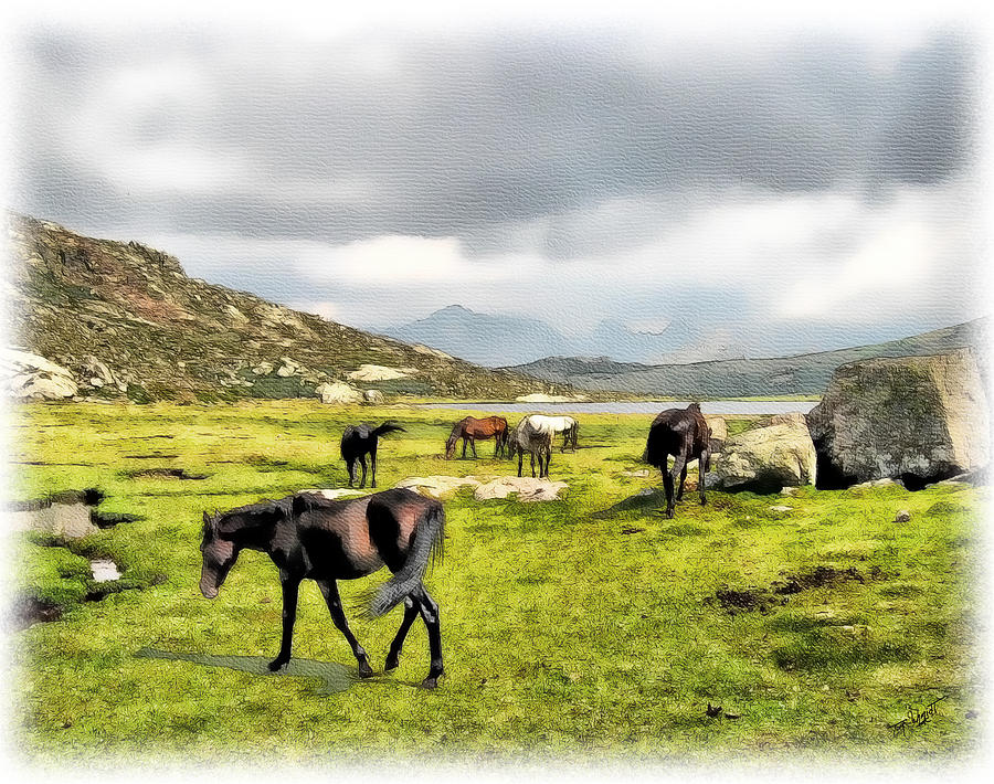 Horses Painting - Horses Of Wyoming by Tom Schmidt