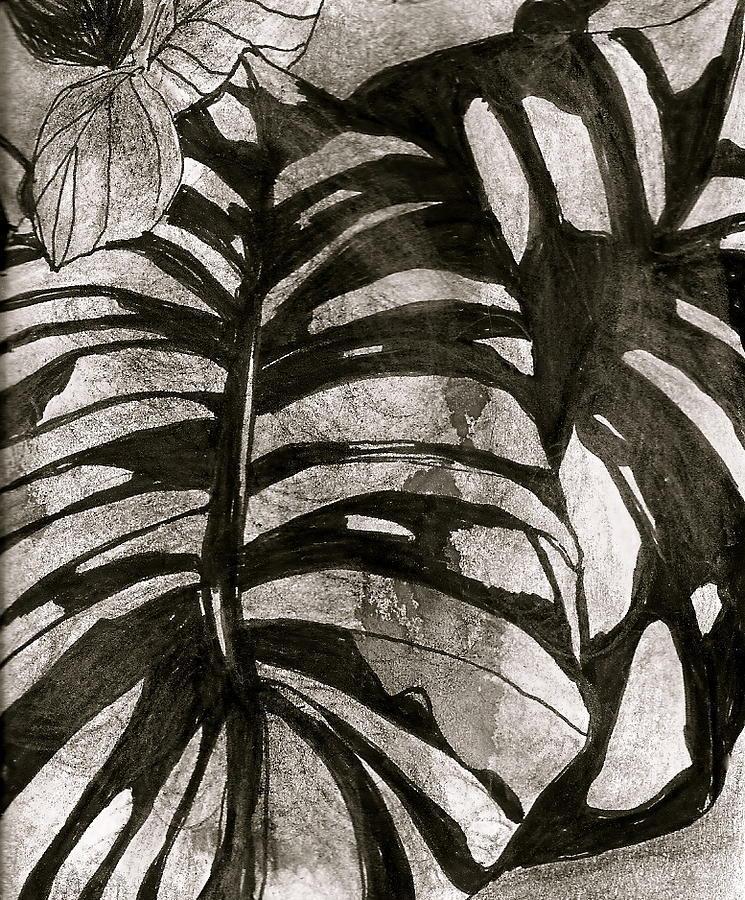 Nature Drawing - Hostas Version II by Claudia Smaletz