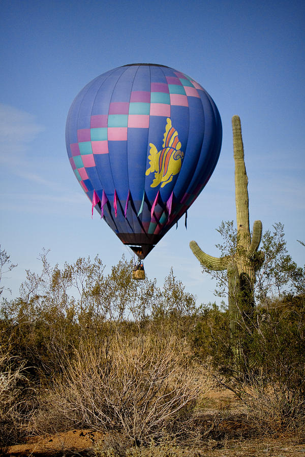 Balloon Photograph - Hot Air Balloon Flight Over The Lush Arizona Desert by James BO  Insogna