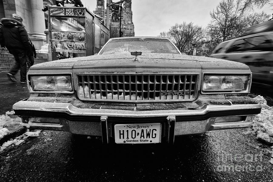 Cold Photograph - Hot Dawg At Central Park by John Farnan