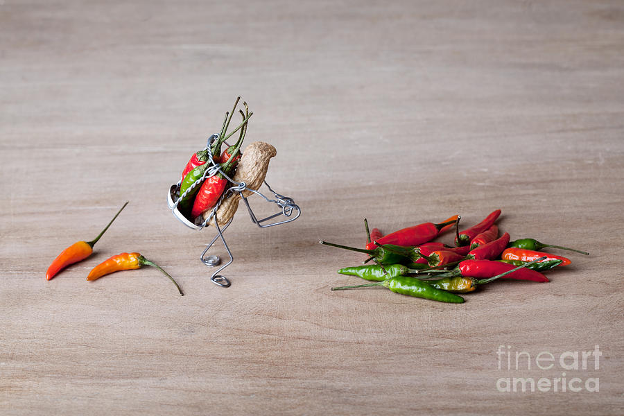 Peanut Photograph - Hot Delivery 02 by Nailia Schwarz