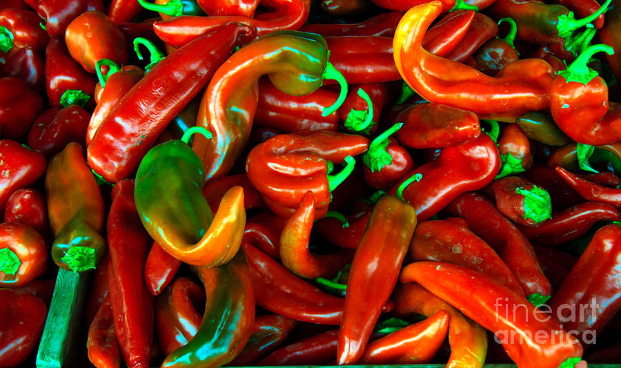 Peppers Photograph - Hot Peppers by Robert Bales