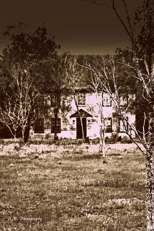 House Photograph - House At The End Of The Street by Alyssa Marek