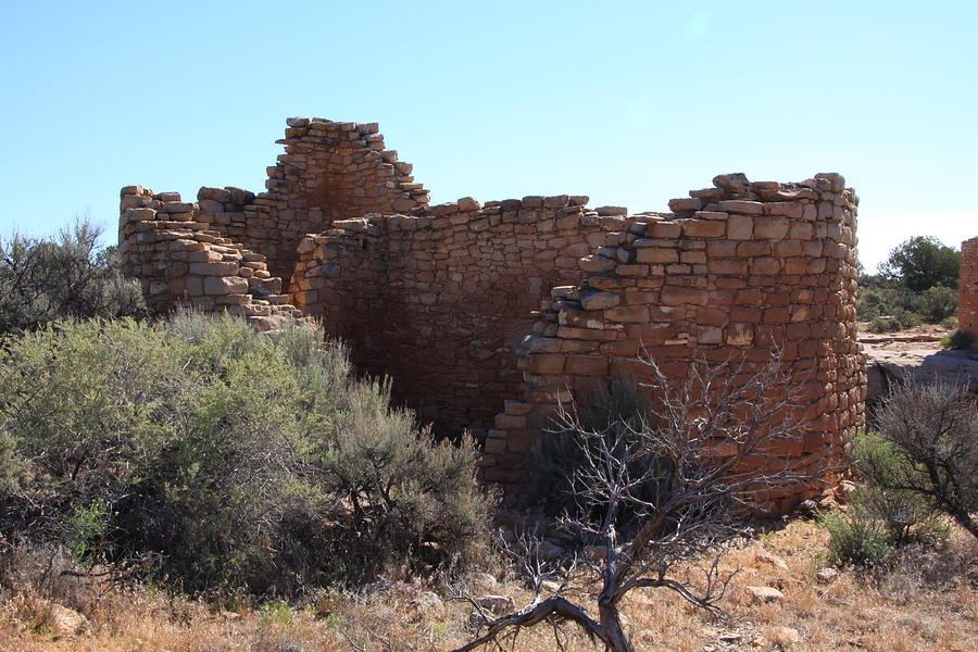 Hovenweep National Monument Photograph - Hovenweep House by Cynthia Cox Cottam