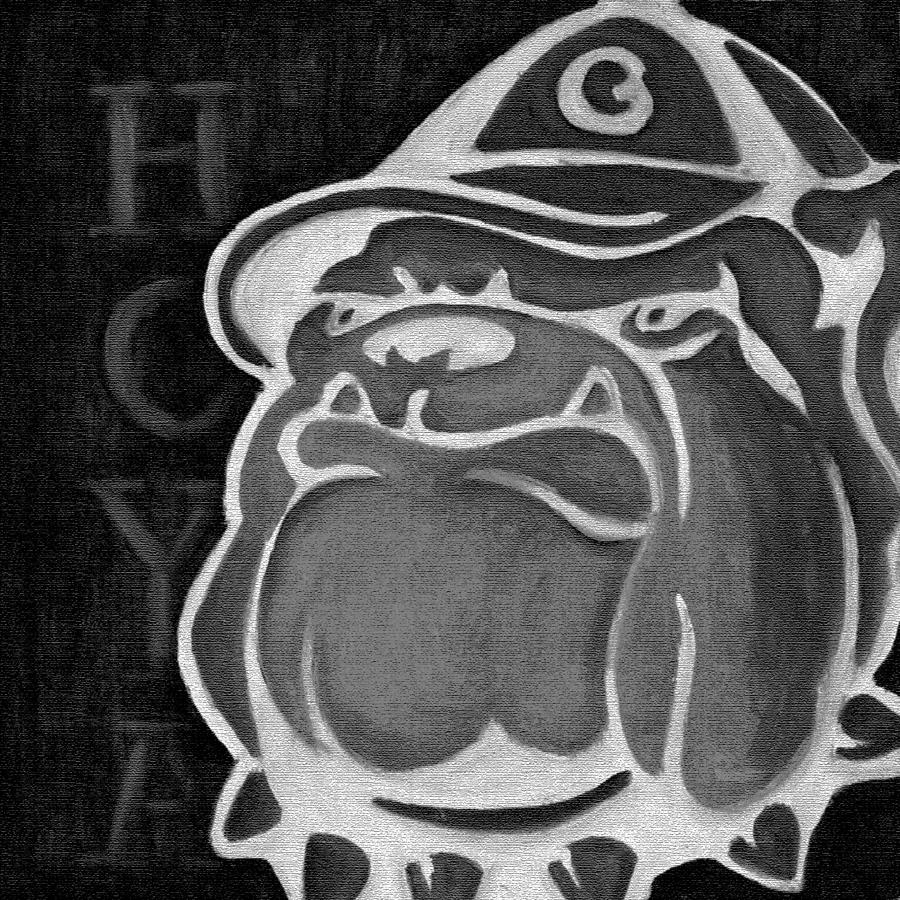 Hoya Jack Painting - Hoya Jackbw2 by Leslie Rock
