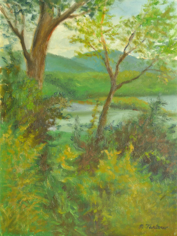 Landscape Painting - Hudson Highlands View by Phyllis Tarlow