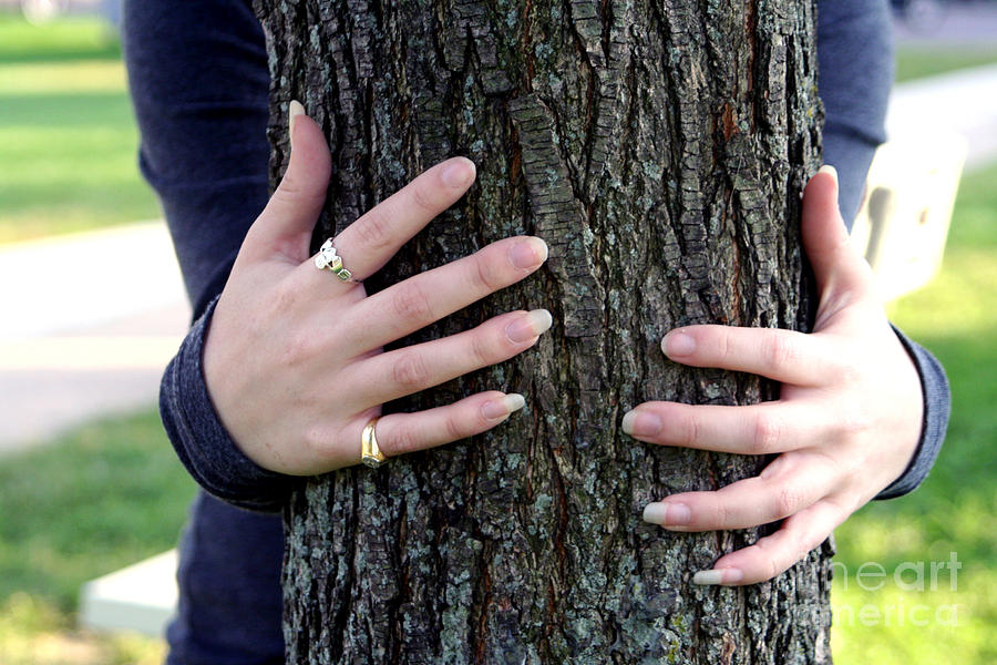 People Photograph - Hug A Tree by Susan Stevenson
